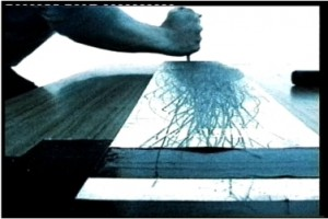 2 無題/Untitled 2000年 シングルチャンネルヴィデオ 2min(Light)2