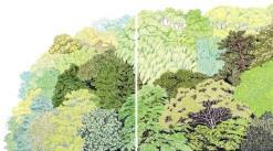 康(吉田)夏奈 《FACE TO THE GREEN》(部分) 2013年 クレヨン、オイルパステル、紙 各 110×93.5cm 作家蔵 撮影 : 早川宏一