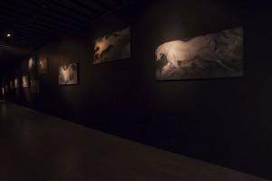 千年前の川を渡る馬(展示風景)